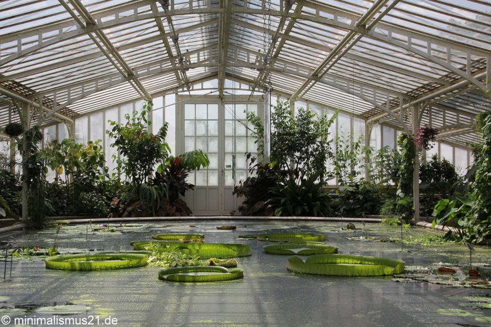 Botanischer_Garten_2