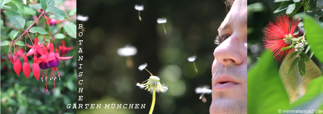 Botanischer_Garten_Collage_Endfassung