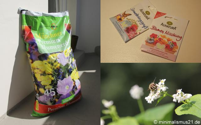 Erde + Schmetterlingsgruß = Falterfreude in spe
